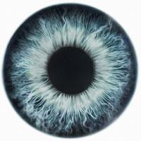 blaue Augen Typ