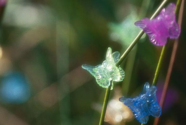 Schmetterling Clips