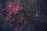 Es gibt außerirdisches Leben im All