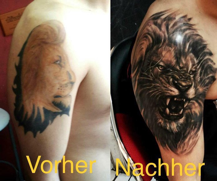 Cover-up Lion