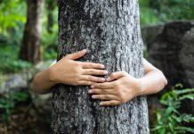 7 einfache Tipps, wie du besser zur Umwelt sein kannst