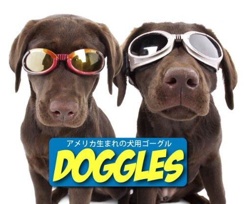 Doggles Hundebrille