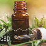 Alles was du über CBD und Hautpflege wissen musst