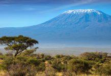 Tansania-Rundreise - Zwischen Himmel und Meer: Abenteuerurlaub am Kilimandscharo