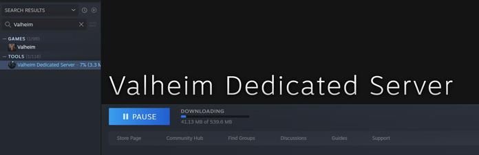 Valheim-Server aufsetzen