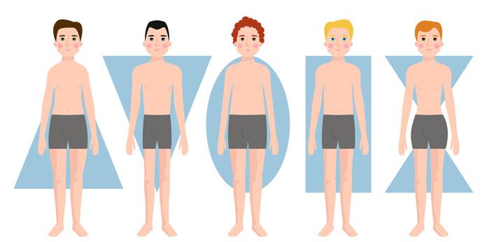 Körperform Typen
