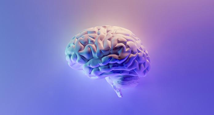 Gehirn trainieren gegen Demenz