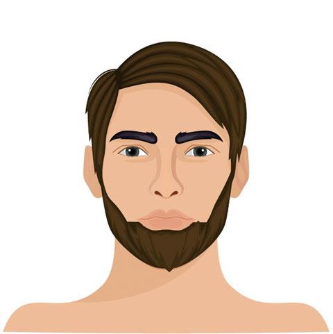 Schifferkrause Barttrend
